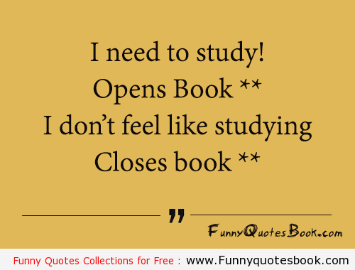 Funny Quotes About Studying Funny Quotes Study Quotes Quotes