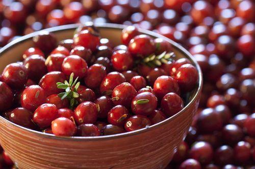 Польза ягоды клюквы для организма - Новое качество жизни