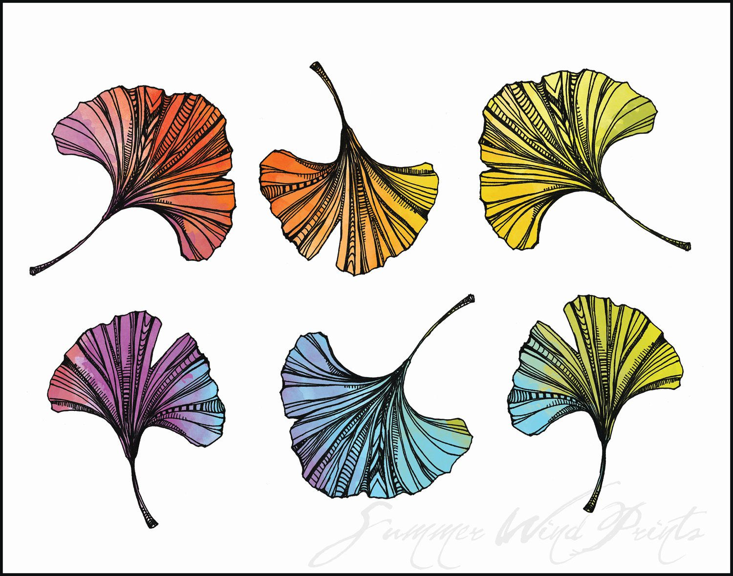 Ink And Watercolor Gingko Leaf