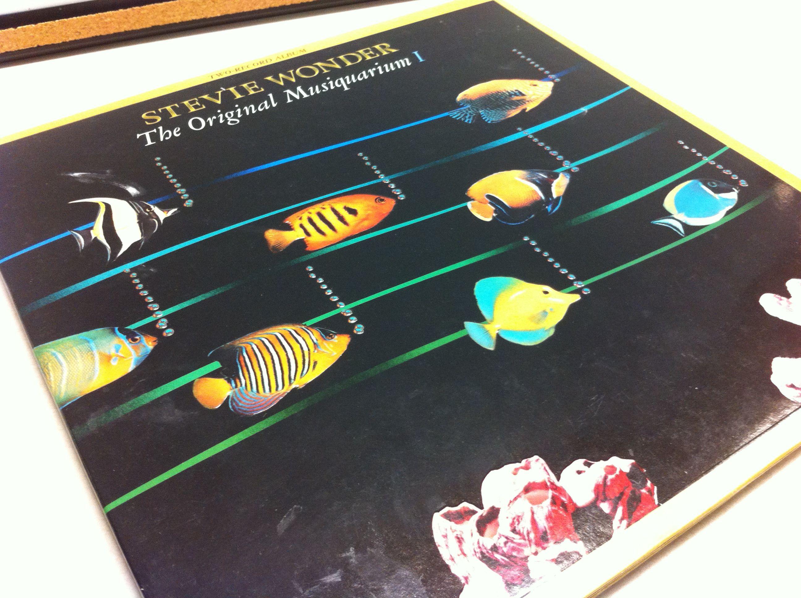 The Original Musiquarium - Stevie Wonder