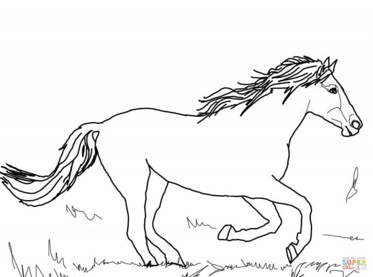 Running Mustang Coloring Page Horse Coloring Pages Animal