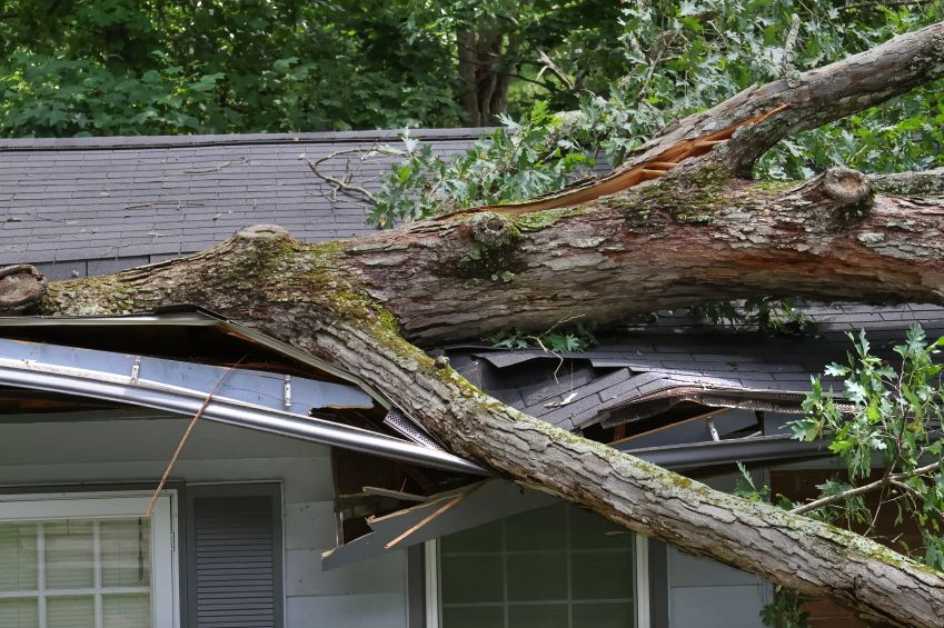 Roof Damaged By Wind Homeowner Roof Damage Homeowners Insurance