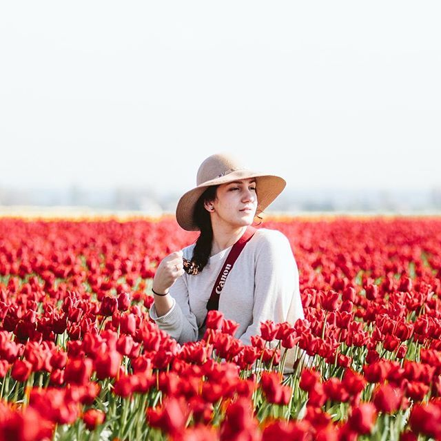 Vincent Carabeo Alohacrabs Instagram Photos And Videos Tulip Festival Tulips Tulip Fields