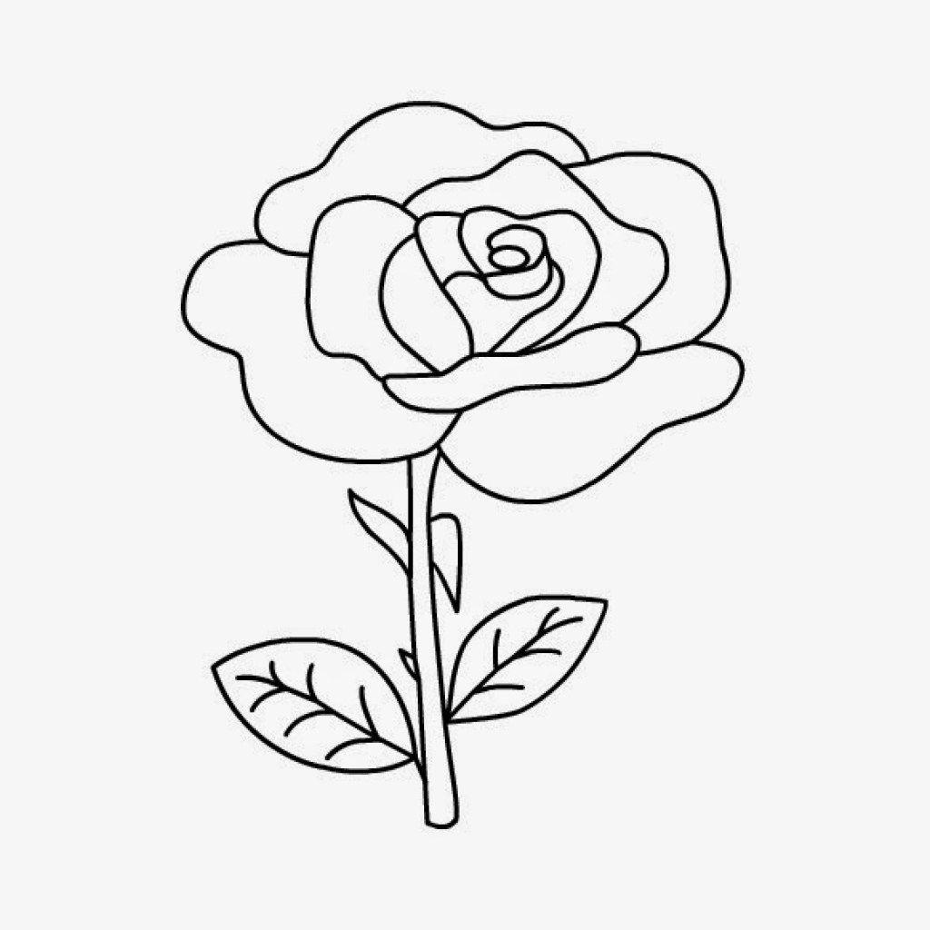 10 Sketsa Gambar Mewarnai Sederhana Bunga