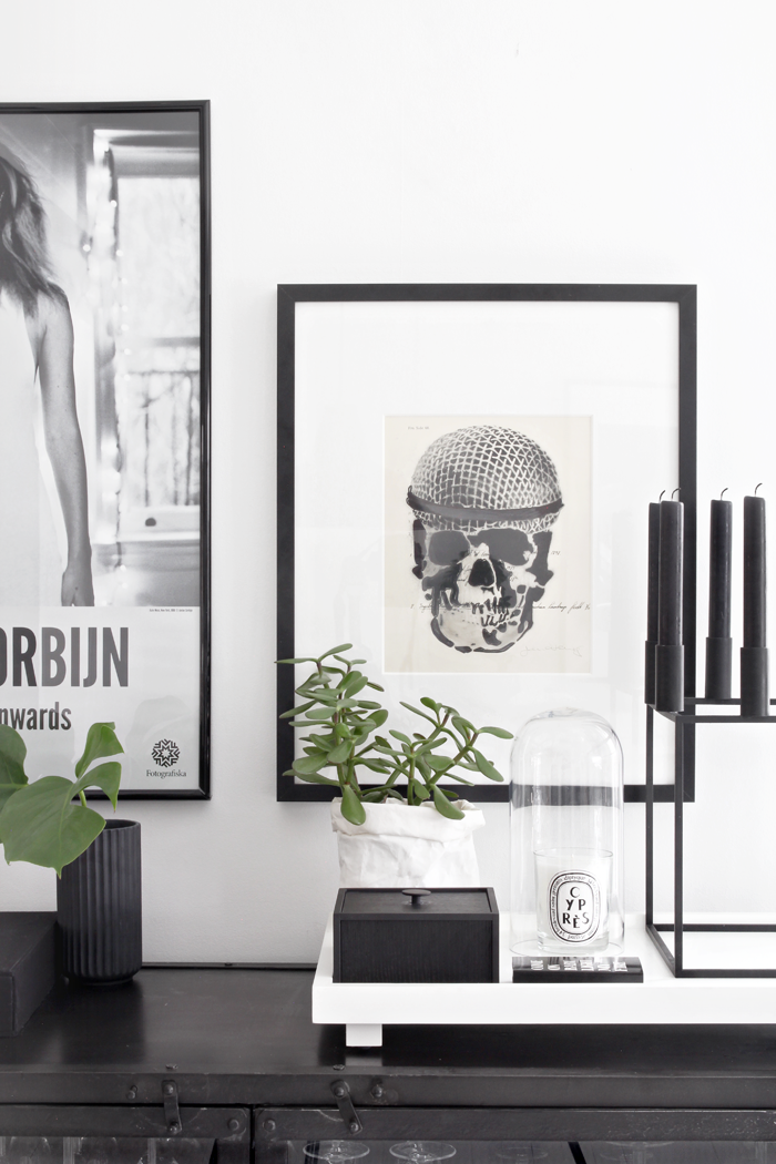 Still life, scull, black & white