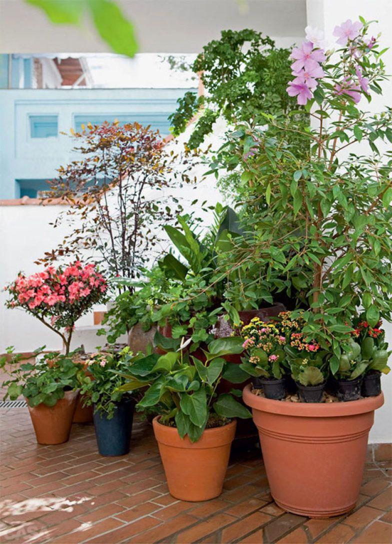 abre-inspiracao-do-dia-jardim-feito-de-vasos-em-sobrado-de-estilo-frances