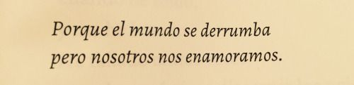 Desnúdame a versos. (chasing-the-sung-in-the-dark:   Elvira sastre)