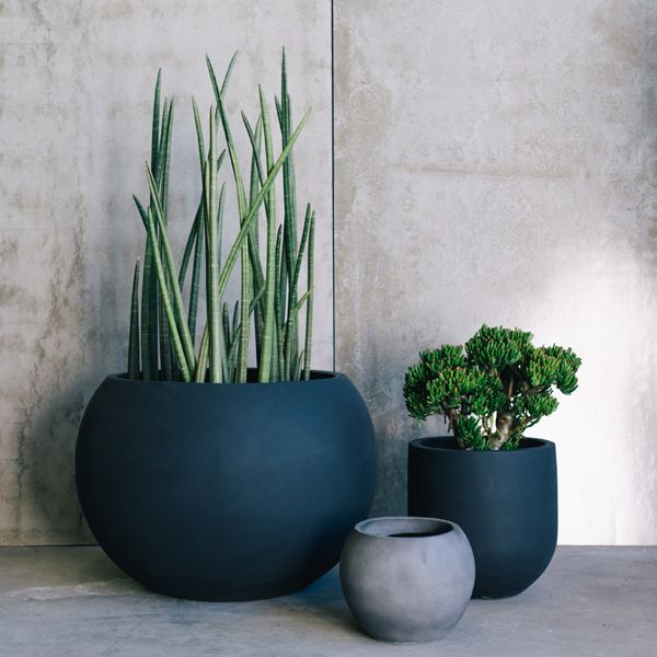 Beautiful Designer Pots By The Balcony Garden | Garden Pots | Pot Plants | Planters |  Flower