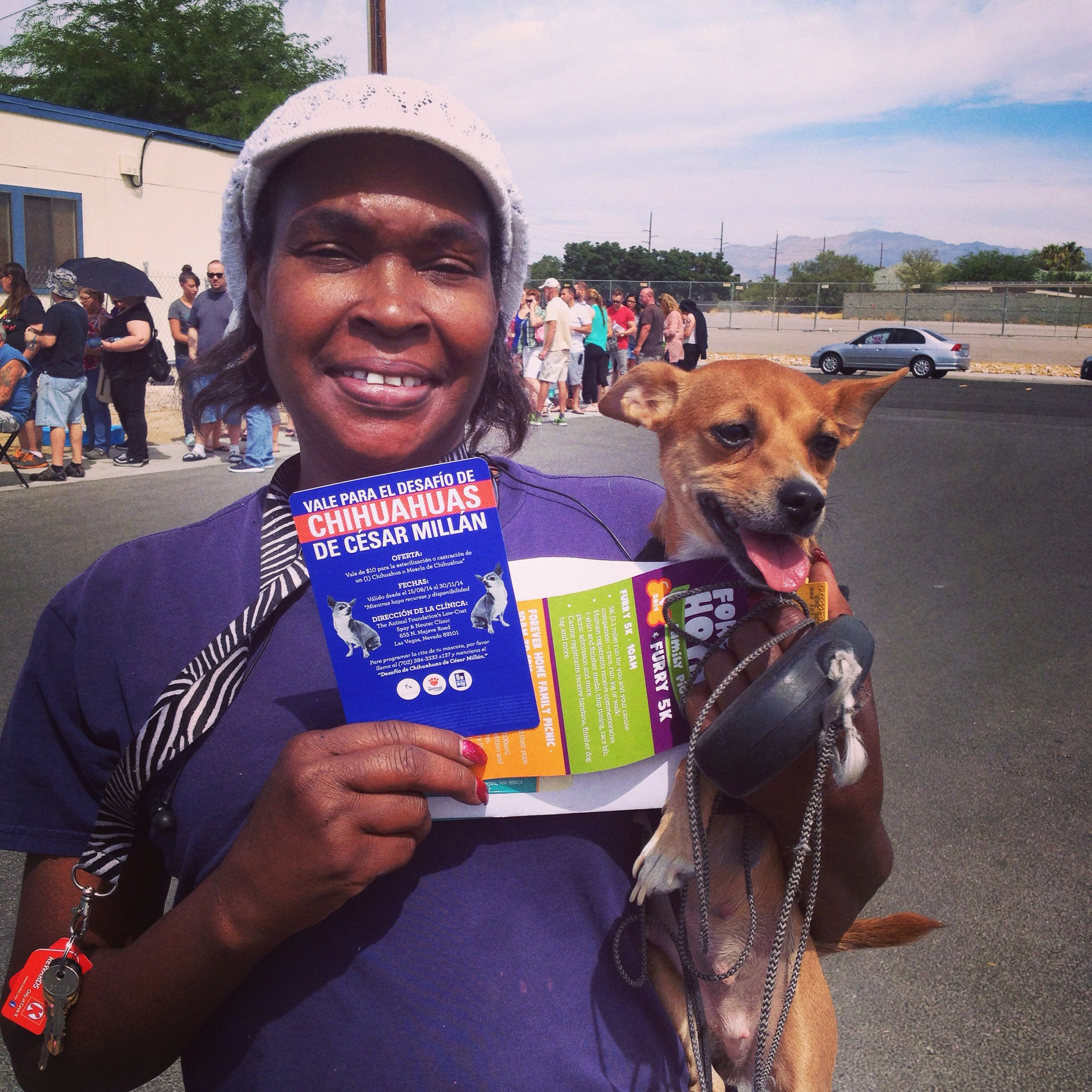 Low Cost Spay And Neuter Clinic Las Vegas Dog Tags Military Dog Dental Care Dog Boarding Near Me