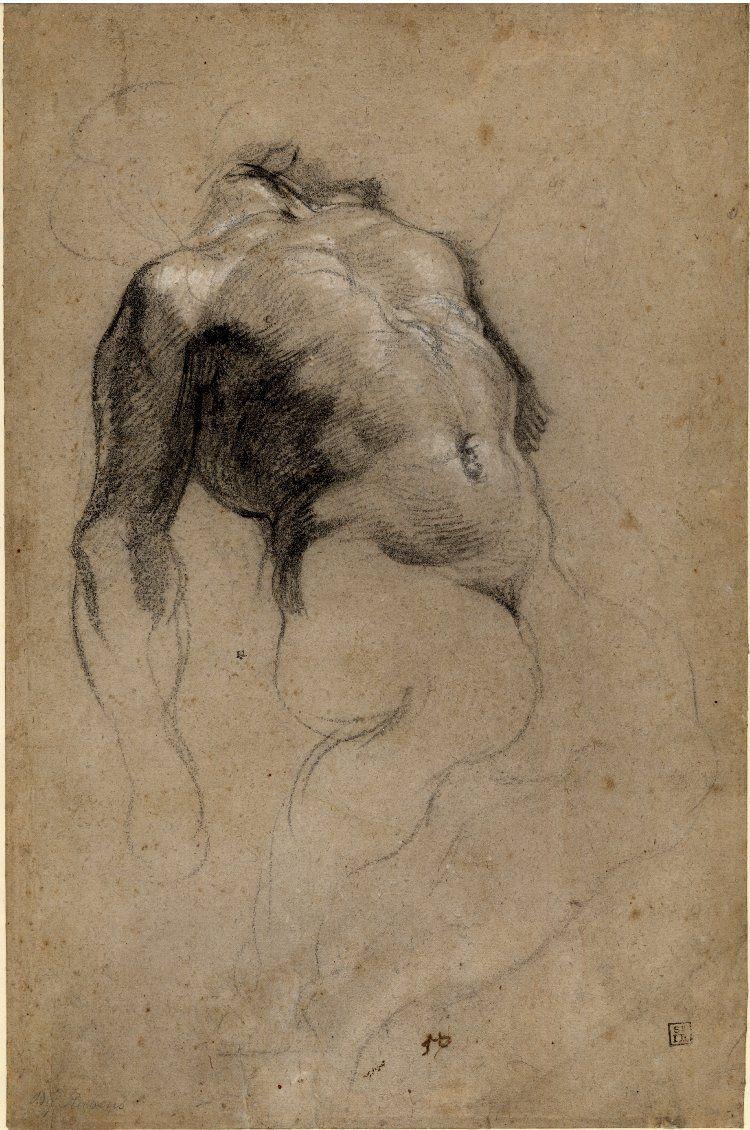 Nude jacob black drawings manage
