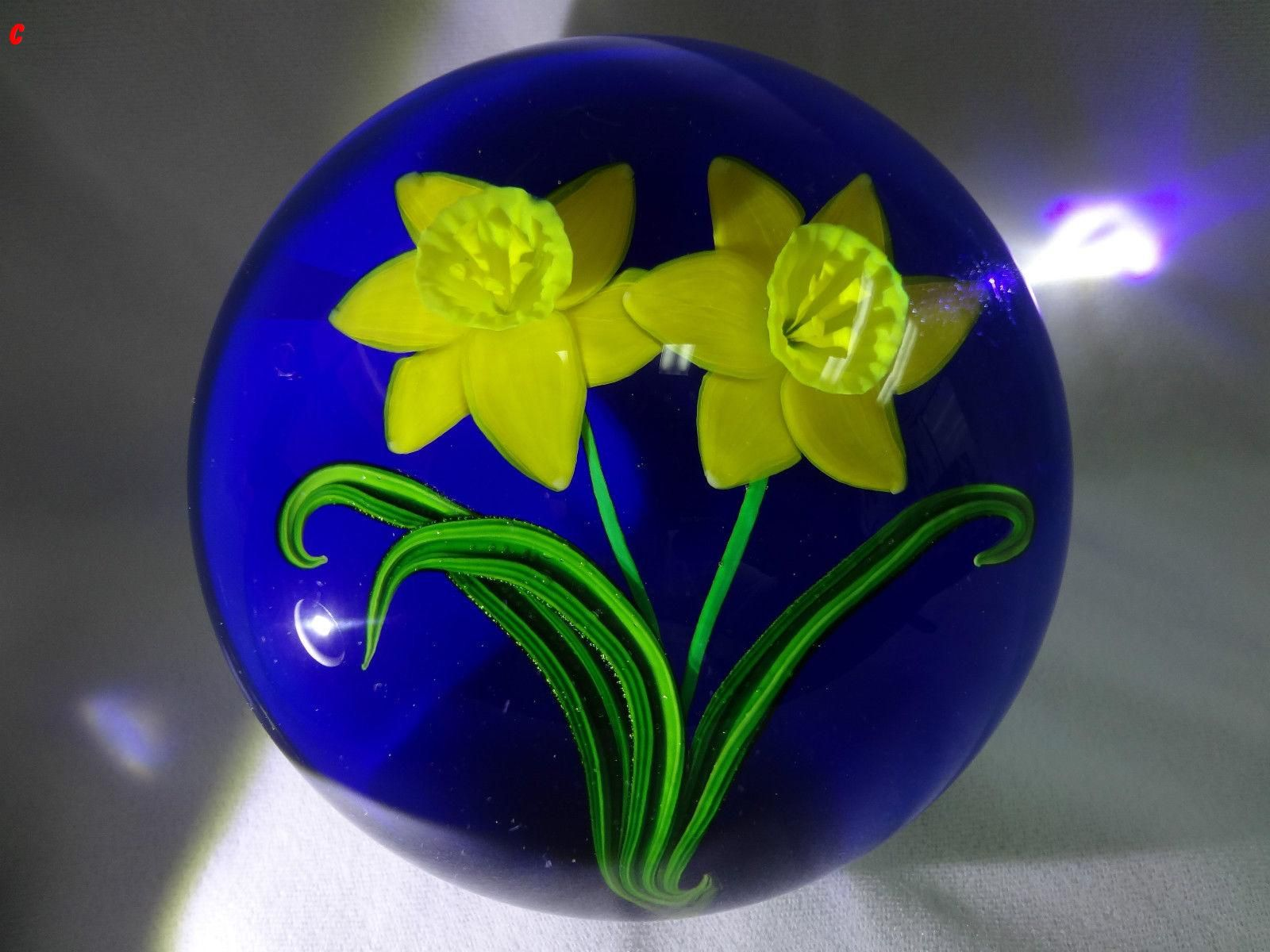 RARE Huge MAGNUM Steven LUNDBERG Double DAFFODIL Glass PAPERWEIGHT 1994 Sold approx £480