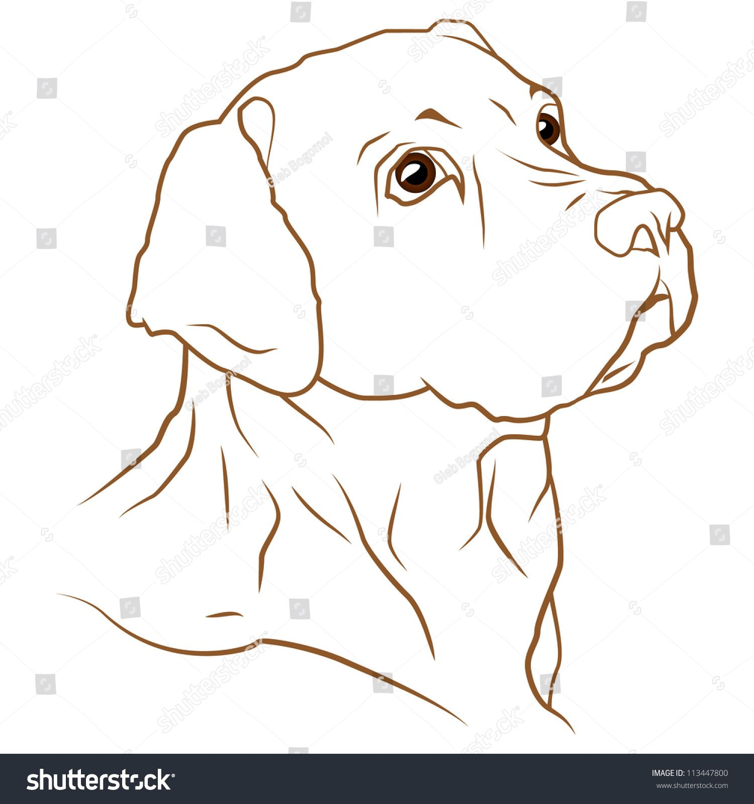 A Beautiful Vector Illustration Of A Labrador Retriever Dog Hunde Gemalde Hund Malen Hund Zeichnen
