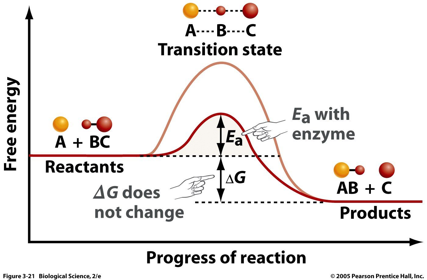 how to calculate enthalpy change from activation energy