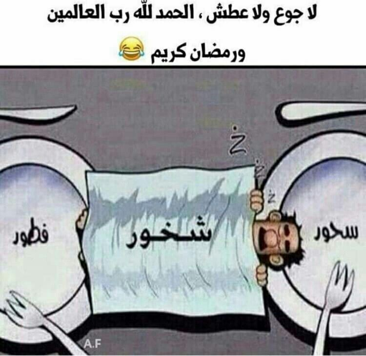 ههههههههه Xd Fun Quotes Funny Funny Arabic Quotes Arabic Funny
