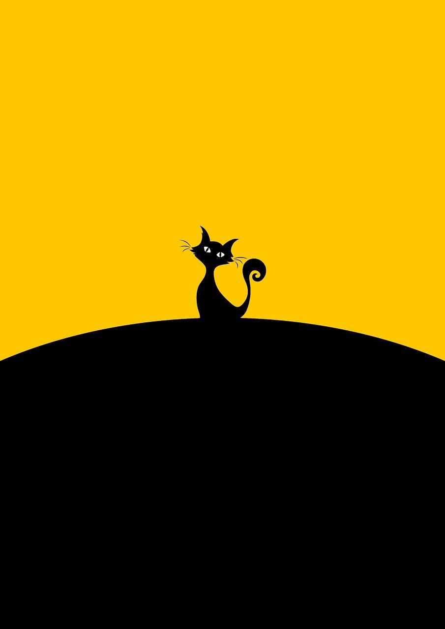 Cute Black Cat Eye Cat Background Cat Wallpaper Cute Black Cats