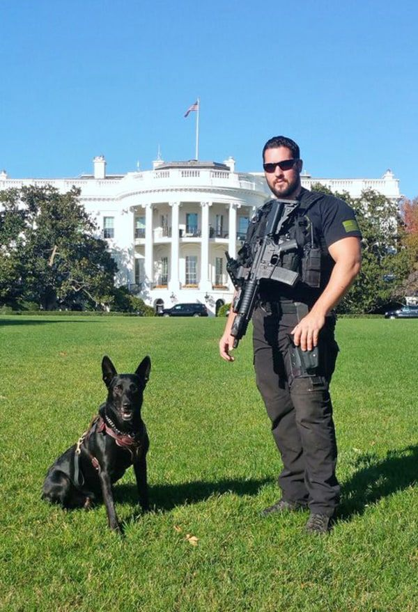How Two Secret Service Dogs Stopped A White House Fence Jumper