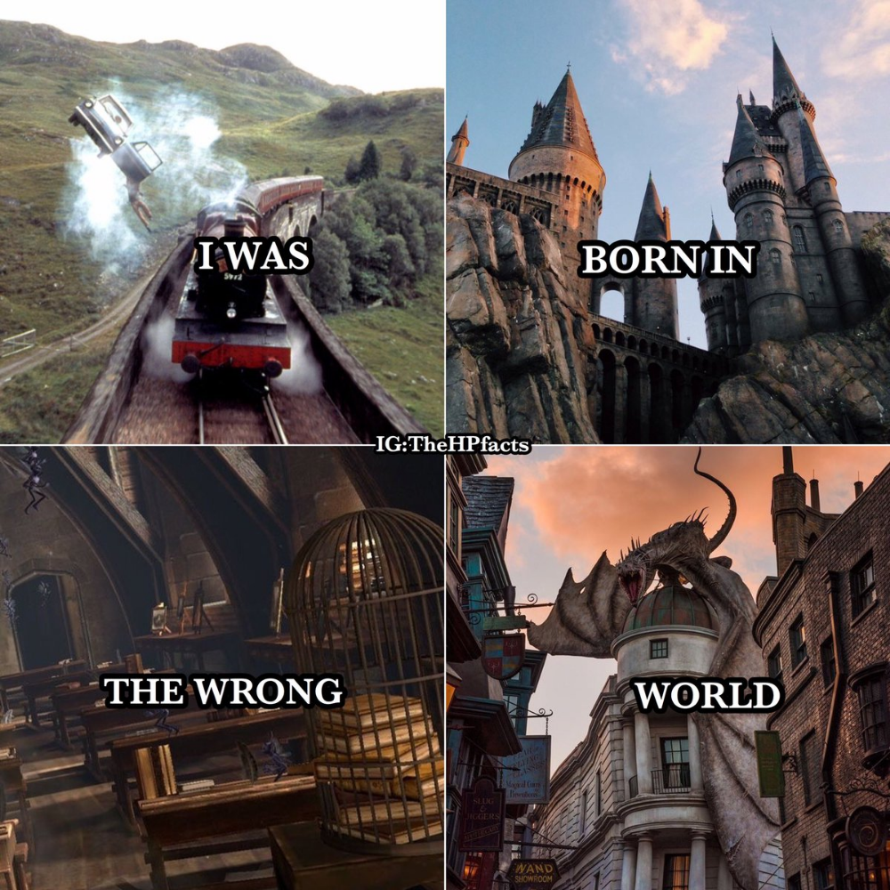 I Was Born In The Wrong World Harry Potter Feels First Harry Potter Harry Potter Facts
