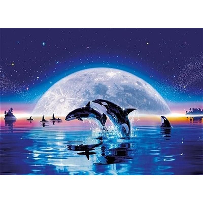 5d Diamond Painting American Indian Kit Bonanza Marketplace You Too Can Be An Artist When You Paint With Di Cross Paintings Orca Whales Animal Drawings