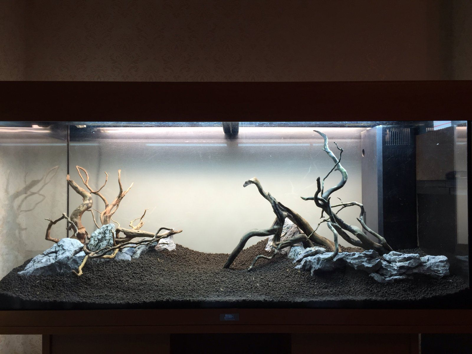 New RIMLESS 120 gallon build what is a must have on a new build