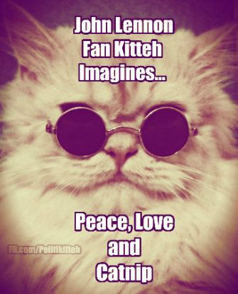 Peace, Love and Catnip