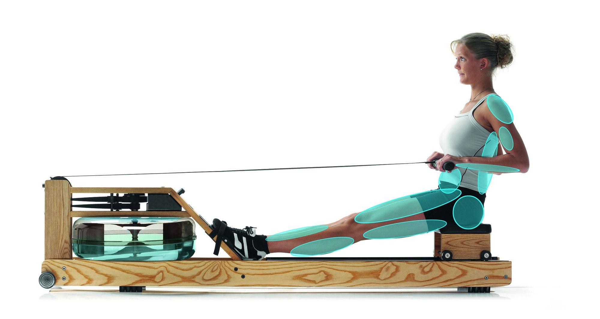 Rameur Waterrower S4 Bois Considere Comme L Exercice Parfait L Aviron Est Un Entrainement Complet Qui Fait Travailler 84 Le Rameur Masse Musculaire Fitness