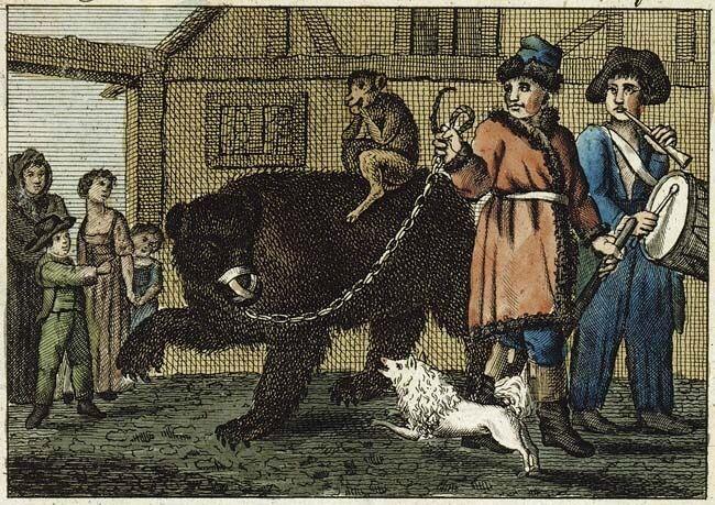 Tanzbär 1810