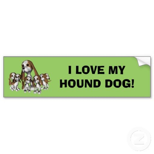 Hound Dog Bumper Stickers