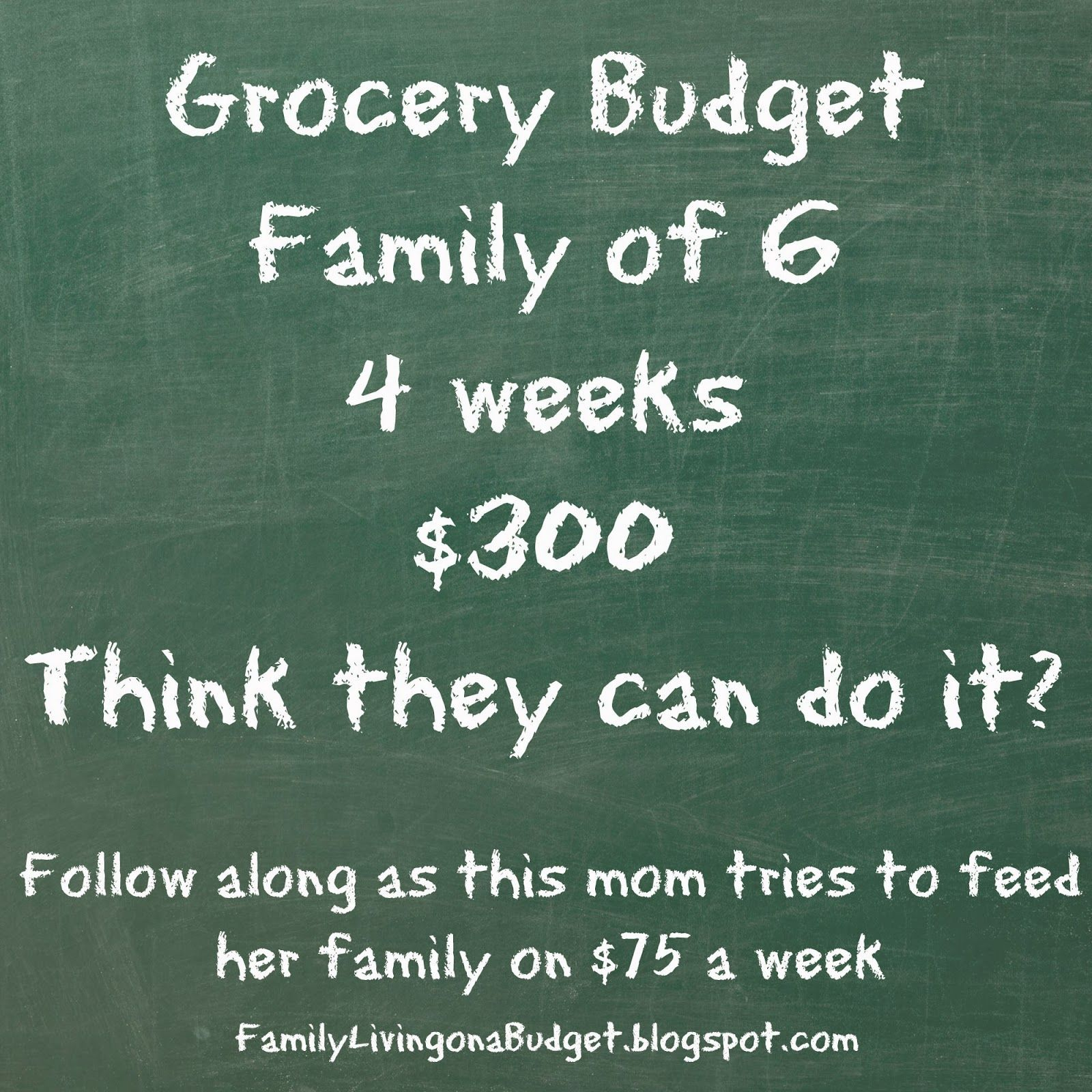 learning on a budget meal plan monday week 2 of 300 monthly