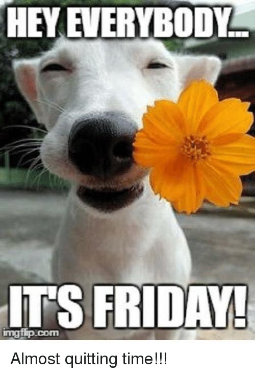 20 Happy Memes That Scream It S Friday Volume 2 Sayingimages Com Happy Friday Meme Funny Friday Memes Happy Friday Humour