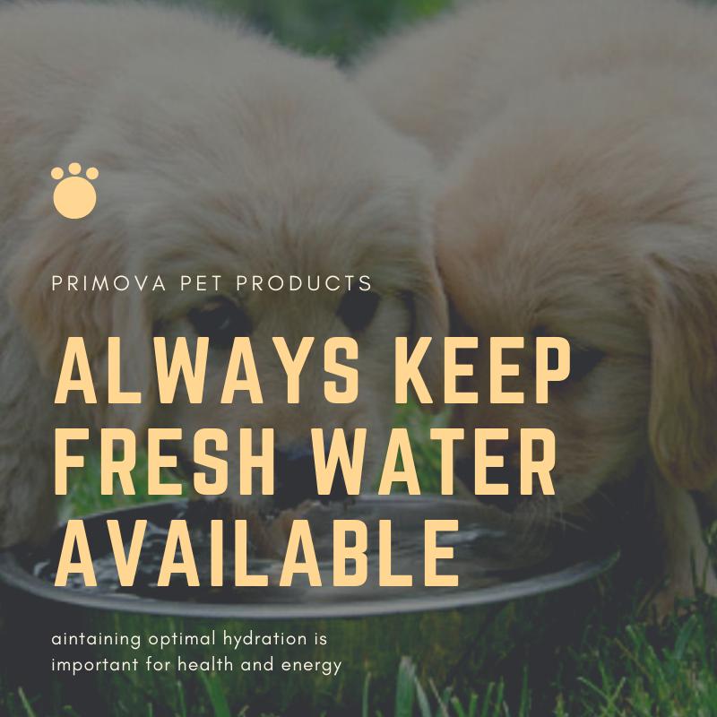 Organic Pet Products, Dog Vitamin, Pet Supplements