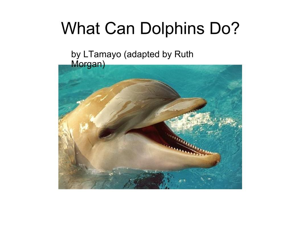 What can Dolphins do? Latest printable adapted book  -  Pinned by @PediaStaff – Please Visit http://ht.ly/63sNt for all our pediatric therapy pins