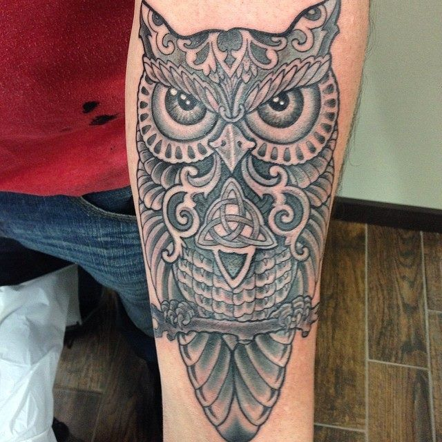 Horned owl by Ami James