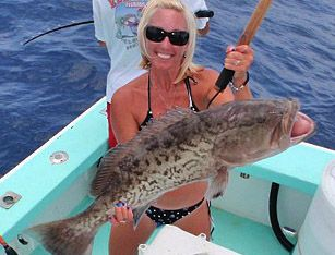 A Florida grouper pro shares some tips to help you find and catch more grouper this season.