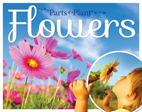 Flowers Ks1 Booklife Publishing Plants Flowers Books