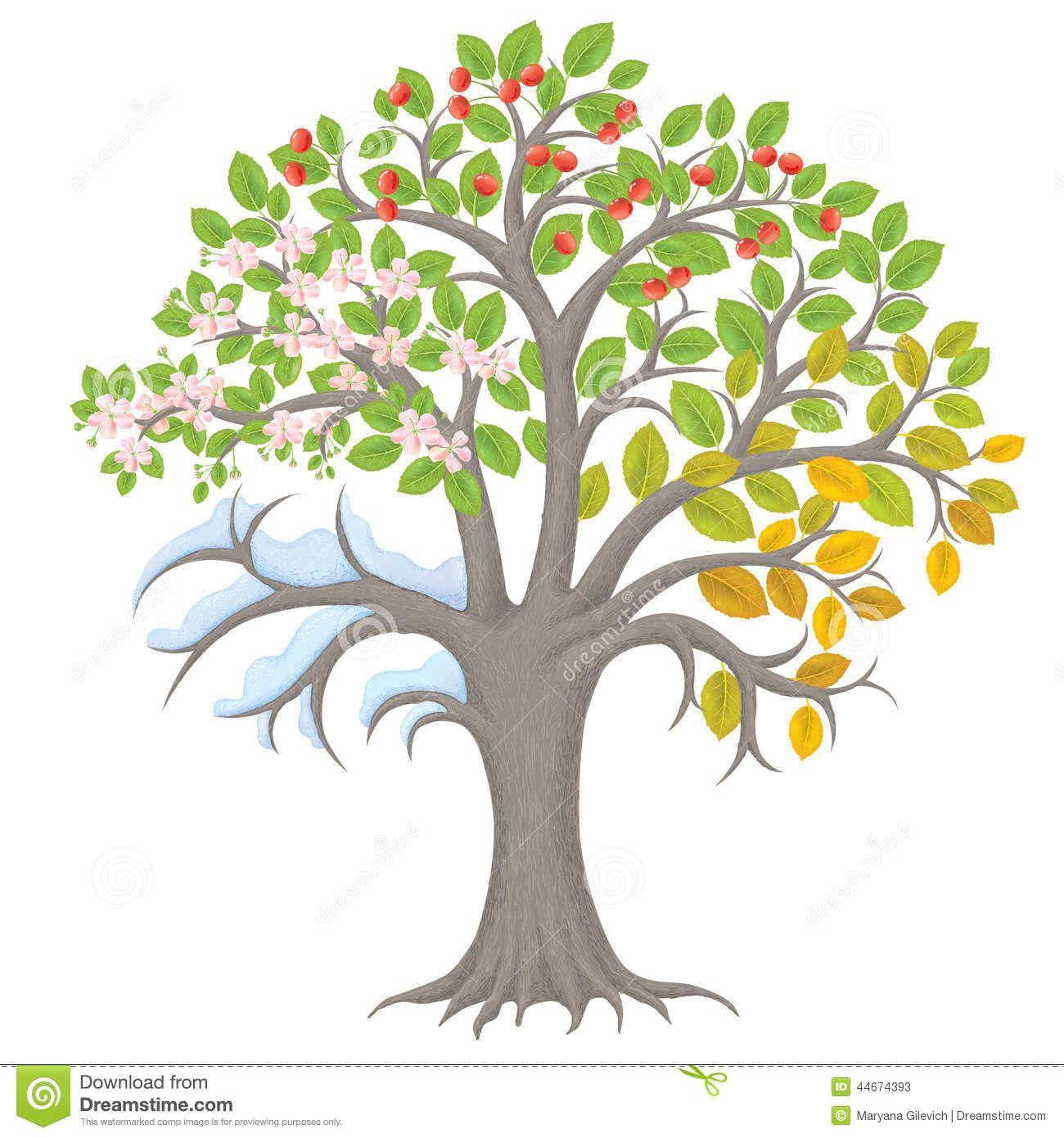 Vierjahreszeiten Baum Handwerk Mit Vorlage
