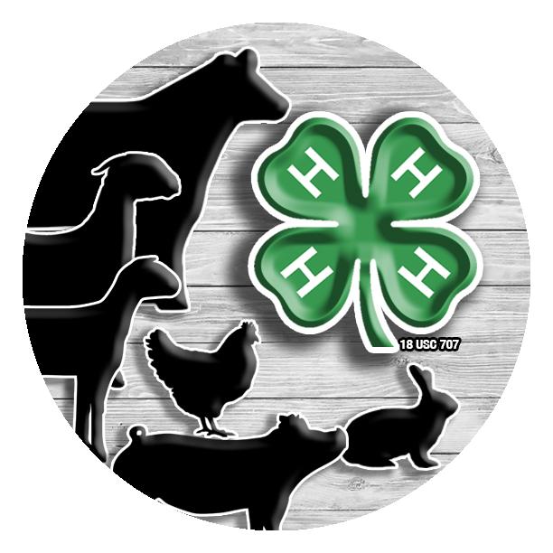 4 h livestock 4 h pinterest livestock rh pinterest ca 4-H Animals 4-H Clover Logo