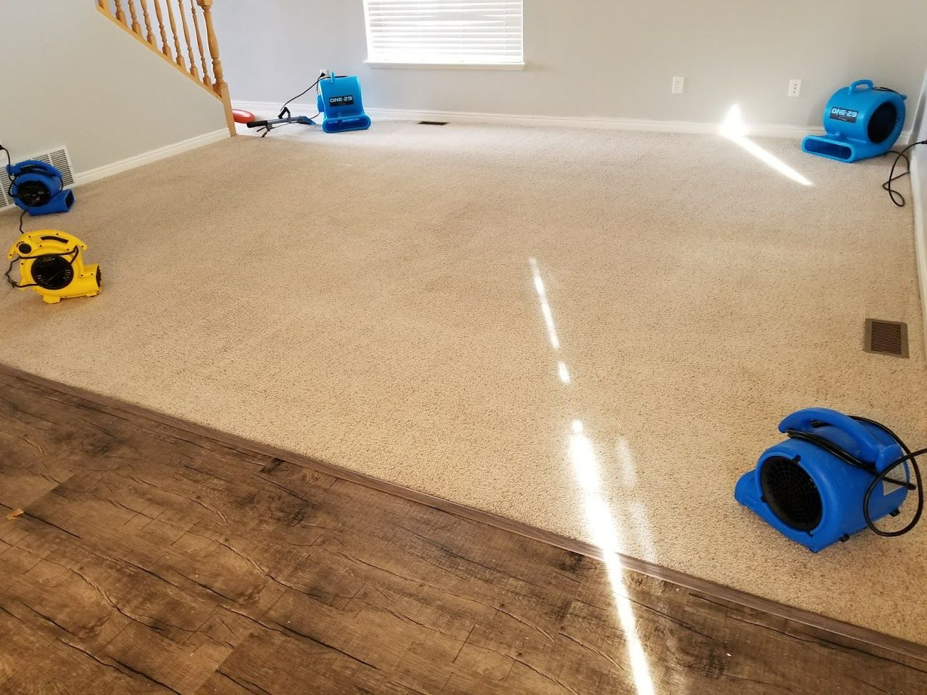 Here Is Some Carpet Cleaning Links In Utah County Alpine