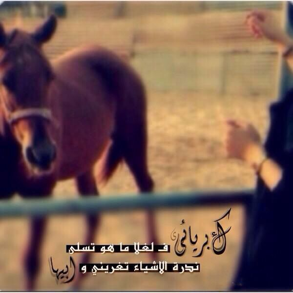 Pin By ʝɛɛɬɛƙ Al3nzii On روعه Quotes Movie Posters Books