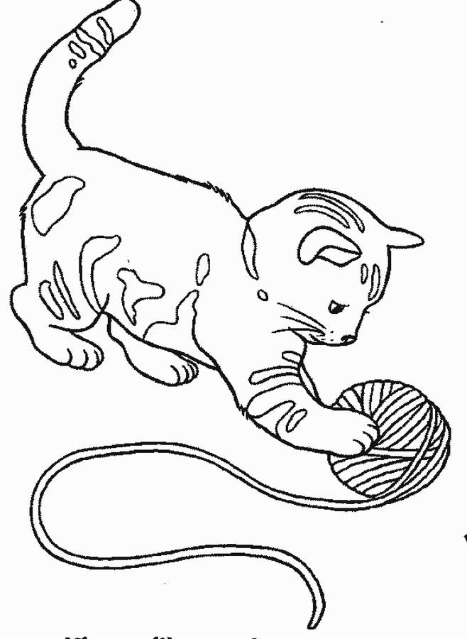Coloriage Chaton Colorier Dessin De Chaton In 2019