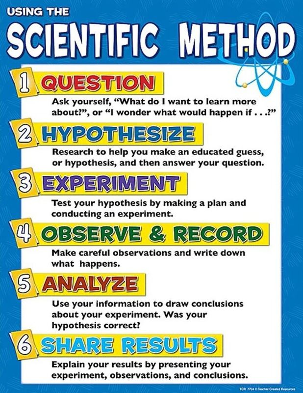 scientific method steps | The Basics: | Science | Pinterest