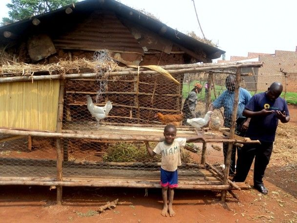 chicken houses designs in kenya