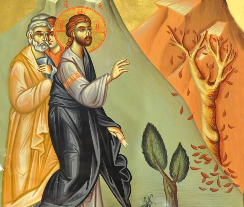 Image result for Jesus and the fig tree icon