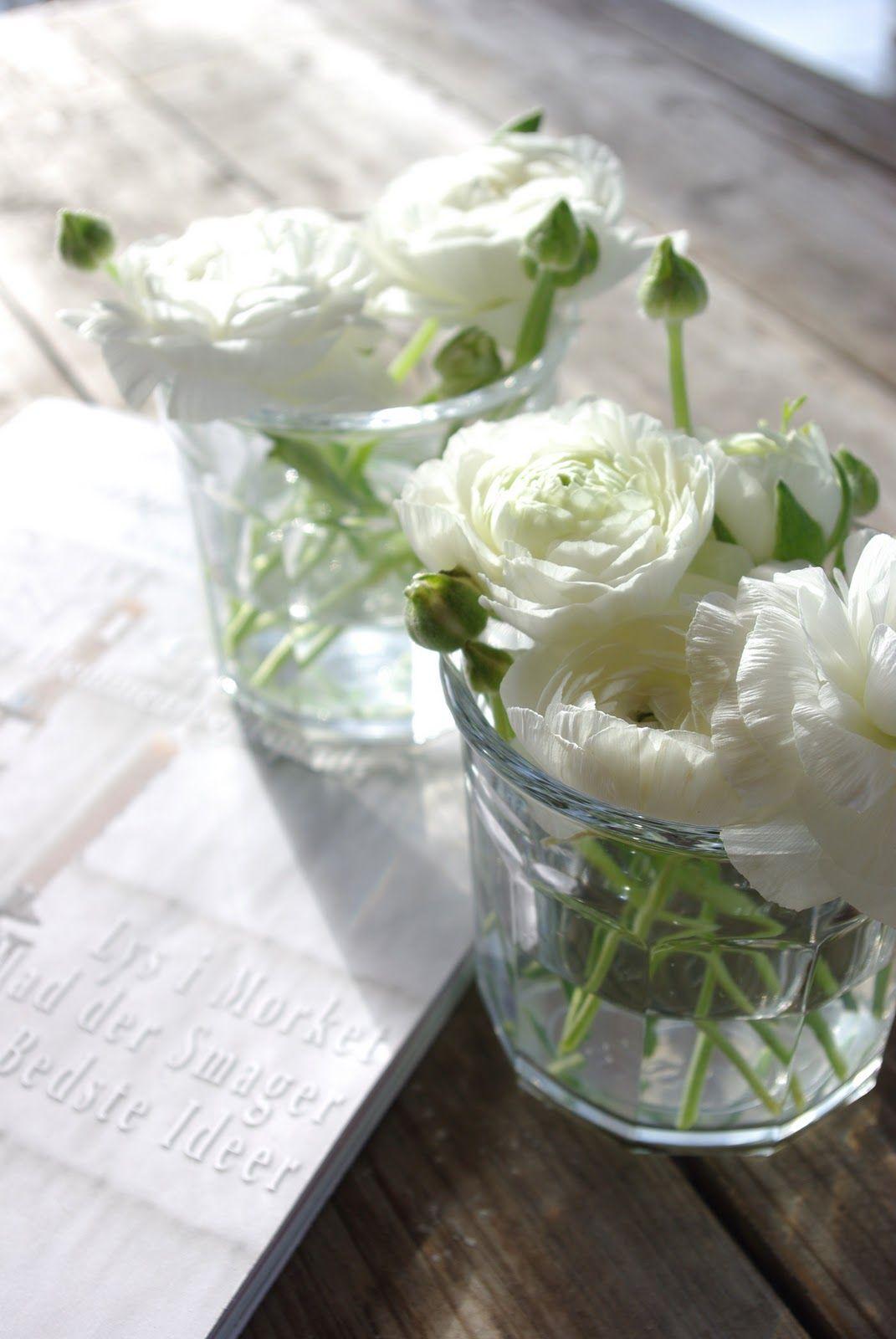 Small White Flower Arrangement Sunlight Charms Spring