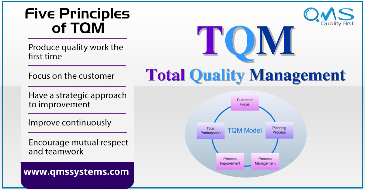 Five Principles Of Tqm Document Management System Management Process Improvement