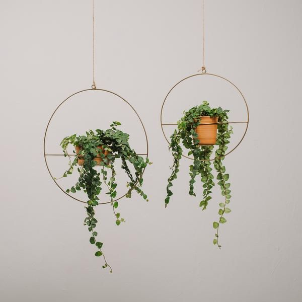 Our Varro Plant Hanger Is A Hanging Planter That Can Hold A Variety Of Pots This Metal Planter Come Hanging Planters Indoor Diy Hanging Planter Hanging Plants