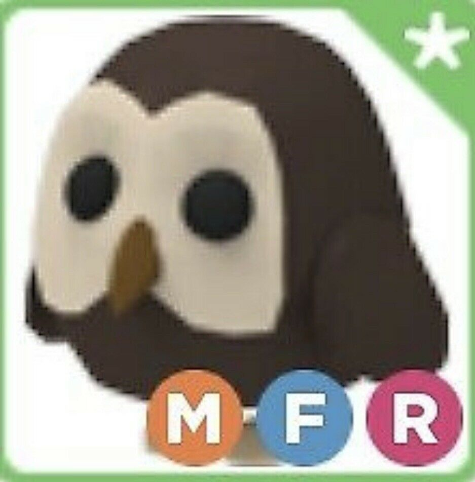 Roblox Adopt Me Mega Owl Painting Comes With Optional Gift Of A Mega Owl In 2020 Pet Adoption Party Pet Turtle Adoption Party