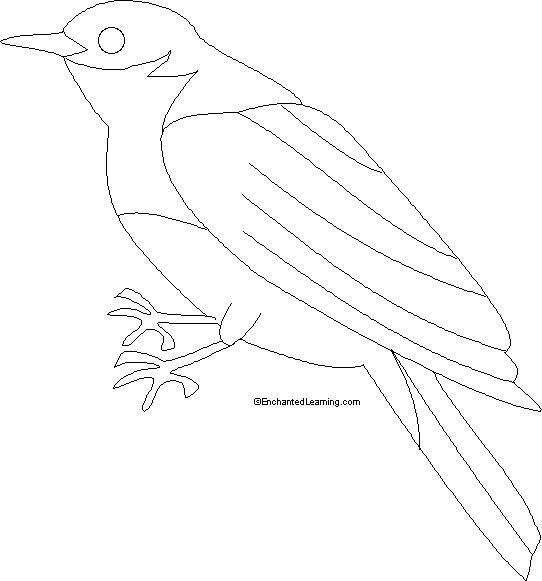Coloring Pages Blue Bird