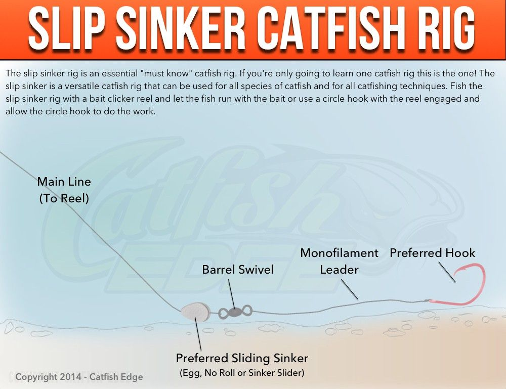 Catfish rigs the best rigs for catfishing catfish rigs