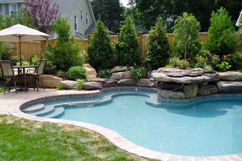 100 Best Freeform Swimming Pools Images In 2020 Swimming Pools Spa Pool Premier Pools Pool Builders Swimming Pool Images Spa Pool