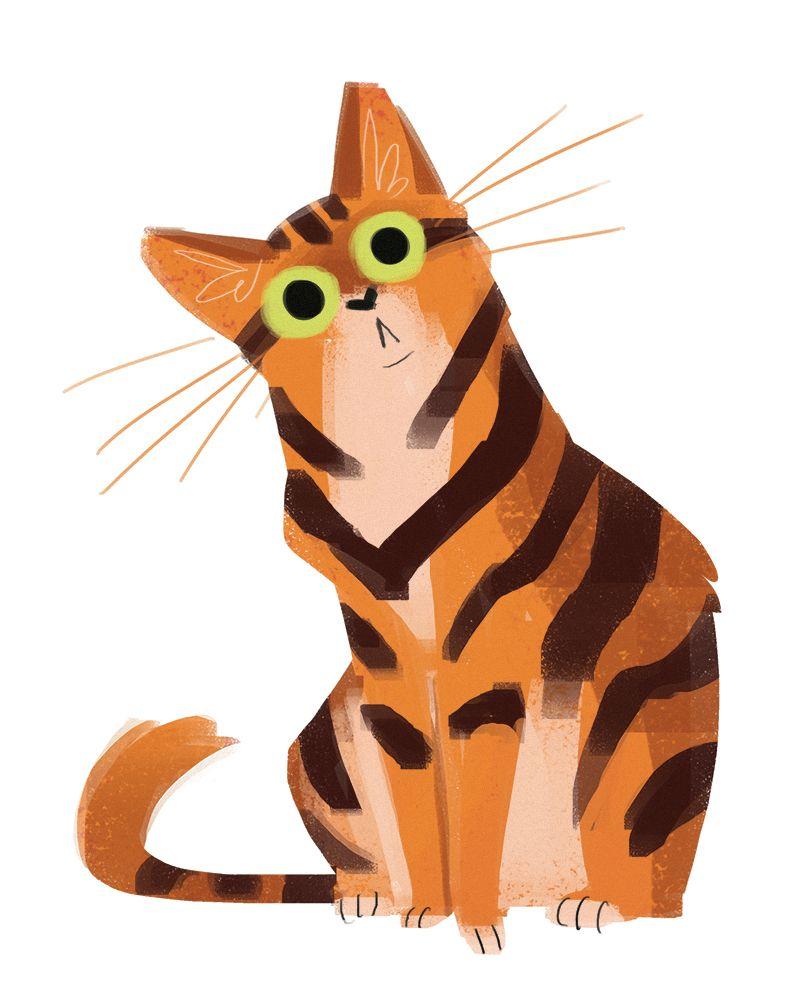 Daily Cat Drawings 510 Orange Cat Cat Painting Cat Drawing Cats Illustration